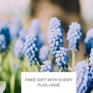 Accessories - GIFT WITH PURCHASE